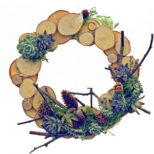 04.11 Succulent Birch Wreath Party 10a